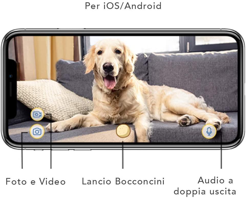 vista smartphone dell'app per gestire telecamera cani